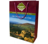 Sycamore Luxury Laminated Paper Bag  by Gopromotional - we get your brand noticed!