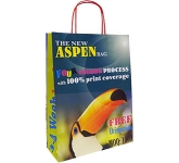 Aspen Forest A4 Twist Handled Kraft Paper Bag  by Gopromotional - we get your brand noticed!