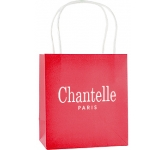 Brookvale Luxury Small Rope Handled Paper Bag  by Gopromotional - we get your brand noticed!