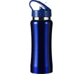 Sierra 600ml Branded Metal Water Bottle