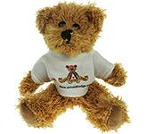 15cm Sparkie Bear With T-Shirt
