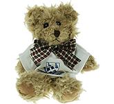 15cm Windsor Scruffy Bear With T-Shirt