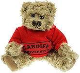 20cm Windsor Scruffy Bear With Hoodie