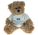 20cm Windsor Scruffy Bear With T-Shirt