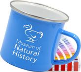 Premium Explorer 300ml Pantone Enamel Mug