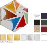 Hexagon ColourBrite Metal Coaster